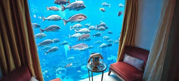 Hotel Atlantis_red