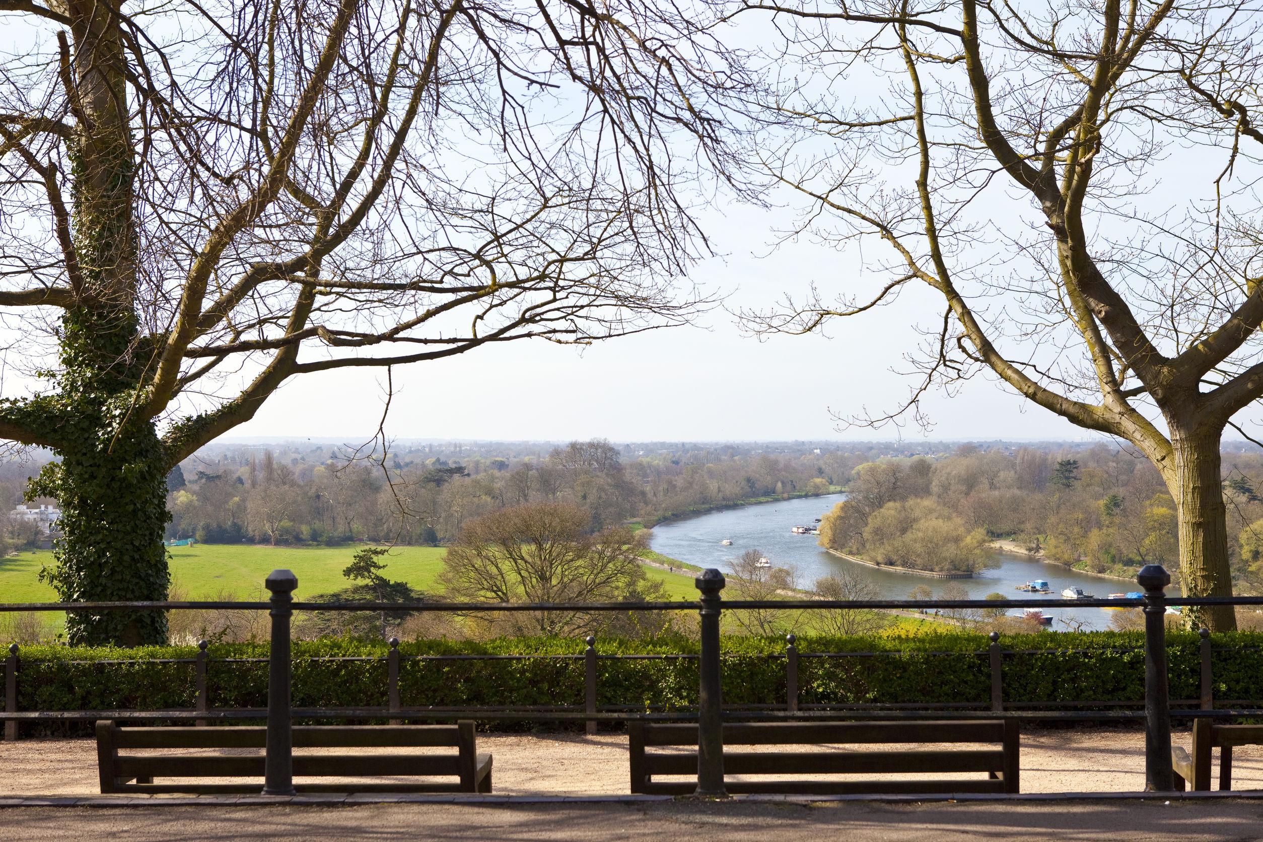 Imagen desde una de las zonas de Richmond Park